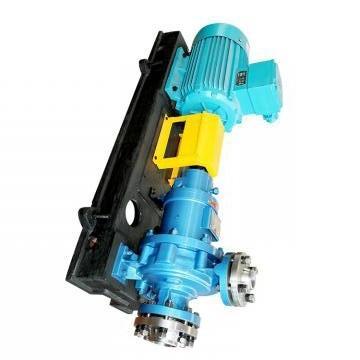 Vickers PV016R1K1T1NCLZ+PVAC1ECMNSJW35 PV 196 pompe à piston