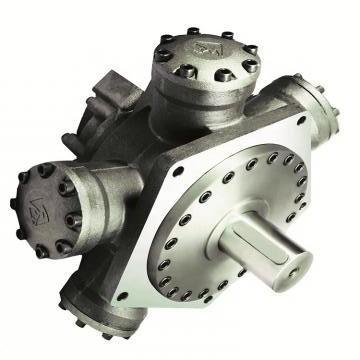 Vickers PV016R1K1AYNMRC+PGP511A0080CA1 PV 196 pompe à piston