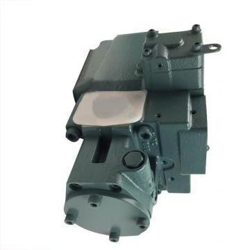 Vickers PV020R1K1AYNMMW+PGP511A0180CA1 PV 196 pompe à piston