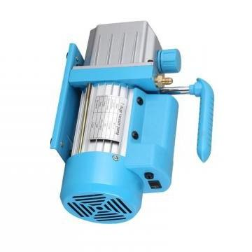 Vickers PVXS-130 PVXS pompe à piston