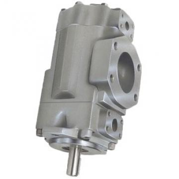 DENISON T6D0282R00B1 pompe à palettes