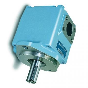DENISON T6ED-052-038-1R00-C100 pompe à palettes