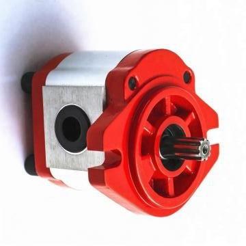 Hengyuan 25YCY14-1B CY pompe à piston