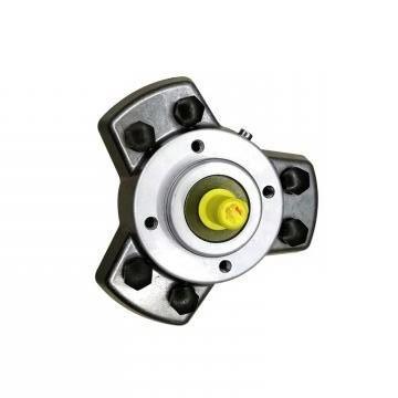 Vickers PV016R1K1AYNMMC+PGP511A0080CA1 PV 196 pompe à piston