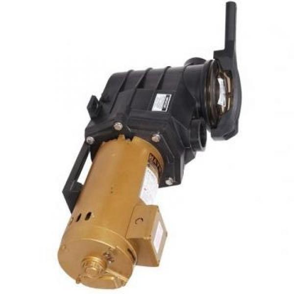 Vickers PV016R1K1JHNMMW+PV016R1L1AYNMM PV 196 pompe à piston #3 image