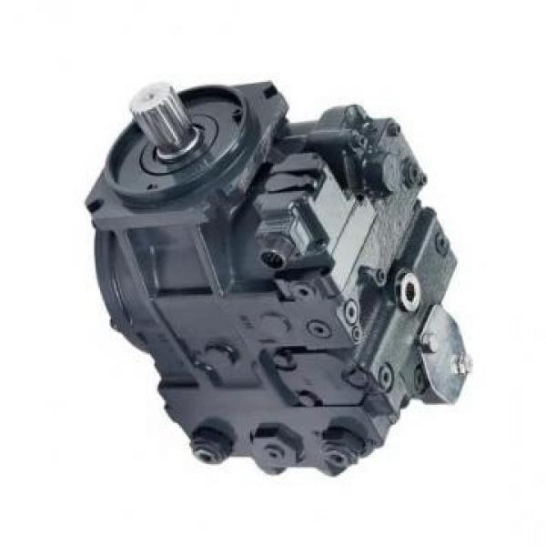 Hengyuan 250 YCY14-1B CY pompe à piston #2 image