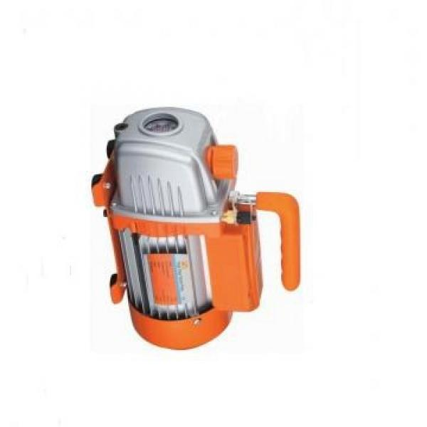 Vickers PV016R1L1T1NMR14545 PV 196 pompe à piston #3 image
