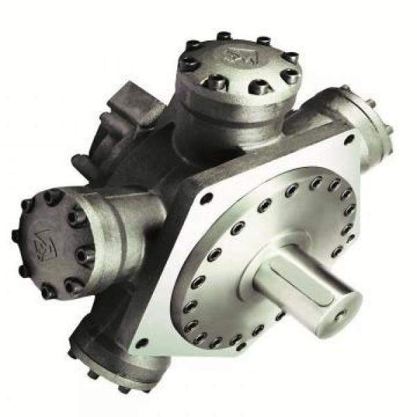 Vickers PV016R1K1AYNMRC+PGP511A0080CA1 PV 196 pompe à piston #2 image