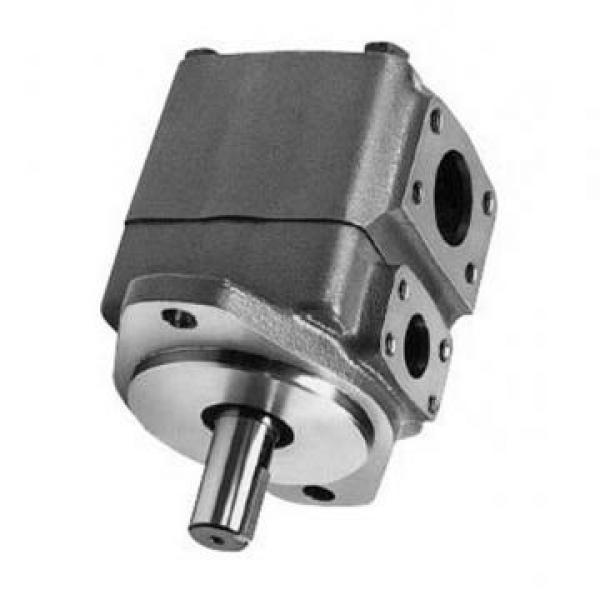 Vickers PVB20RSY20C11 PVB pompe à piston #1 image