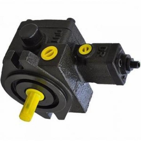 Vickers PV032L1E3C1NFWS PV pompe à piston #3 image