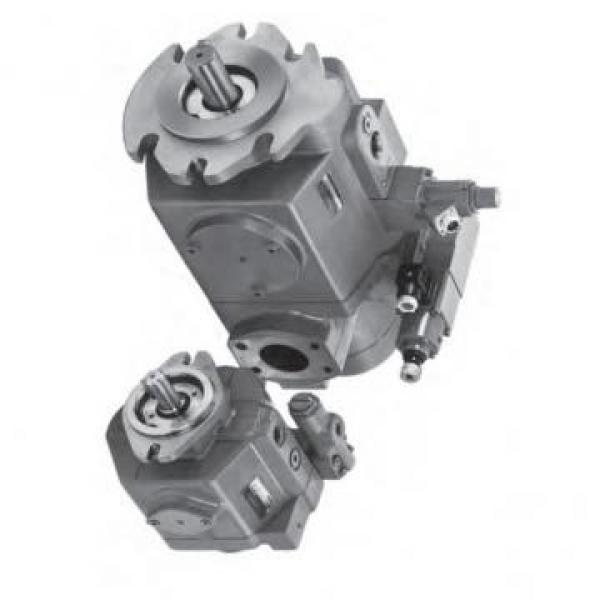 Vickers PV032L1E3C1NFWS PV pompe à piston #2 image