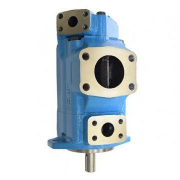 Vickers PV016R1K1T1NMMZ+PVAC1PCMNL35 PV 196 pompe à piston #3 image