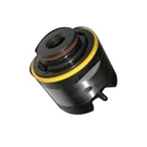 Vickers 4520V42A8-1CC22R Double pompe à palettes #1 image