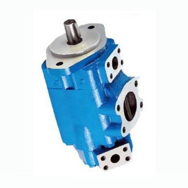 Vickers 4520V42A8-1CC22R Double pompe à palettes #3 image