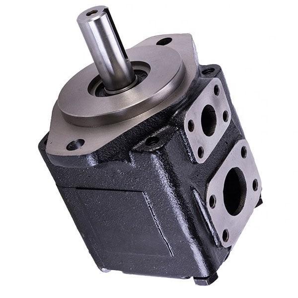 DENISON T6EC-062-014-2R00-C100 pompe à palettes #1 image