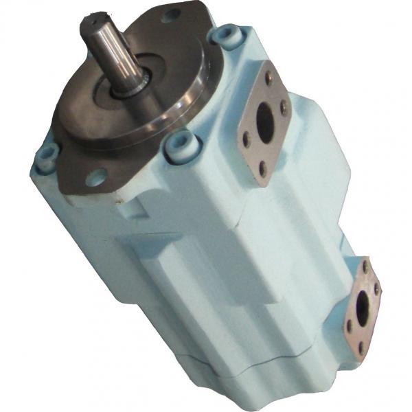 DENISON T6EC-062-014-2R00-C100 pompe à palettes #3 image