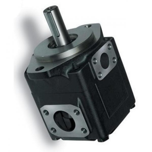 DENISON T6EC-062-014-2R00-C100 pompe à palettes #2 image