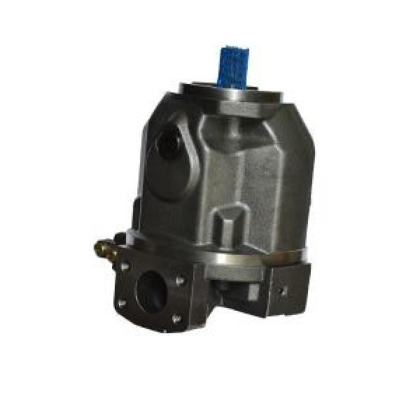 Hengyuan 250 YCY14-1B CY pompe à piston #3 image