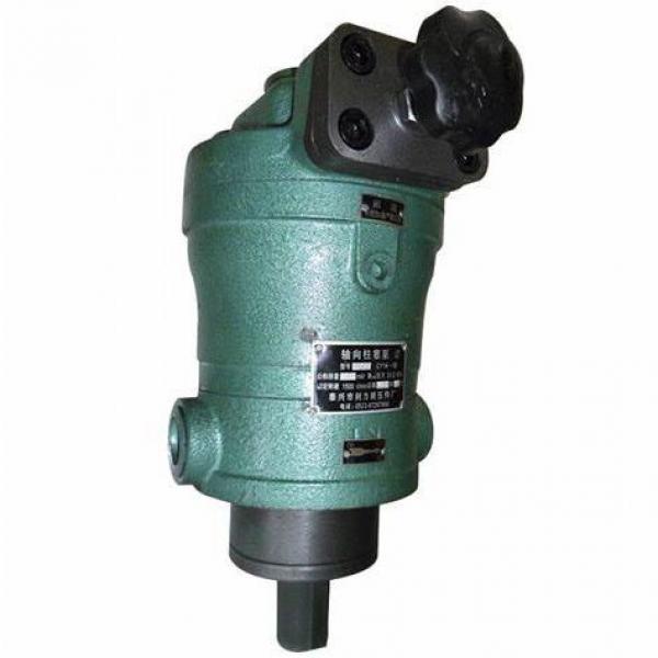 Hengyuan 250 YCY14-1B CY pompe à piston #1 image