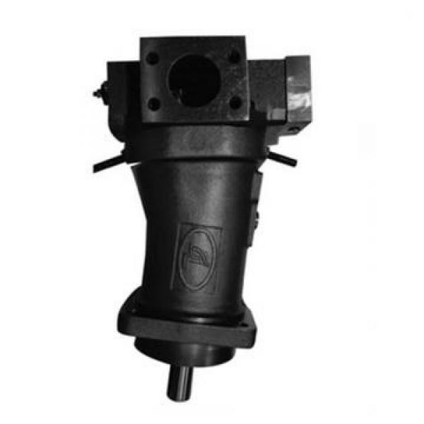 Vickers PV016R1L1T1NMMD4545 PV 196 pompe à piston #2 image