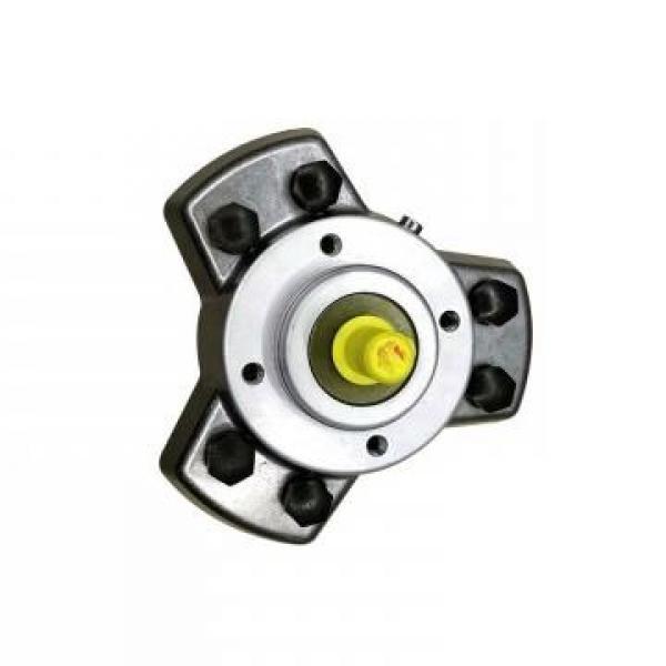 Vickers PV016R1K1AYNMRC+PGP511A0080CA1 PV 196 pompe à piston #3 image
